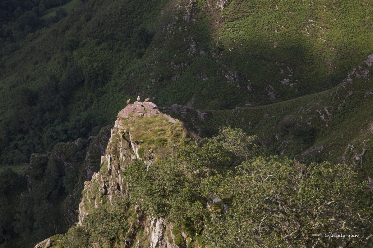 Pays basque 3_6