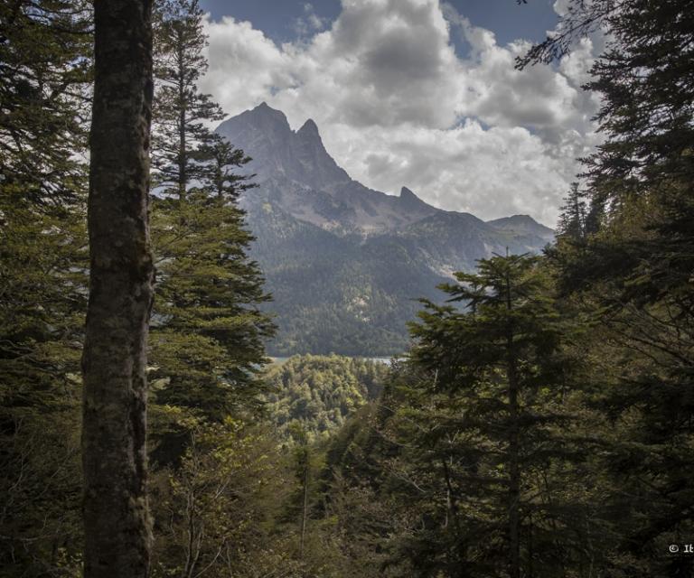 Montagne 1_14