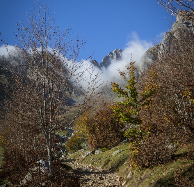 Montagne 1_39