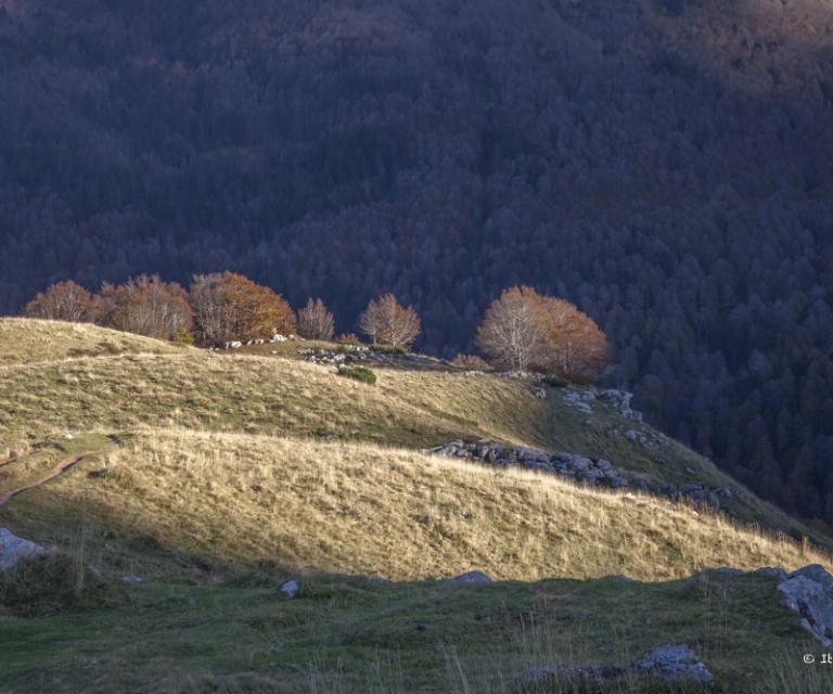 Montagne 1_41