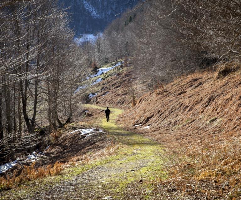 Montagne 2_29