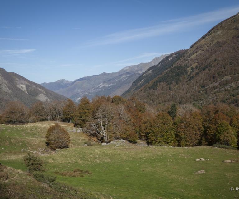 Montagne 2_50