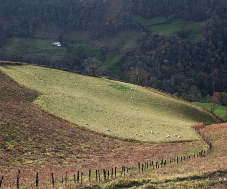 pays basque 1_46