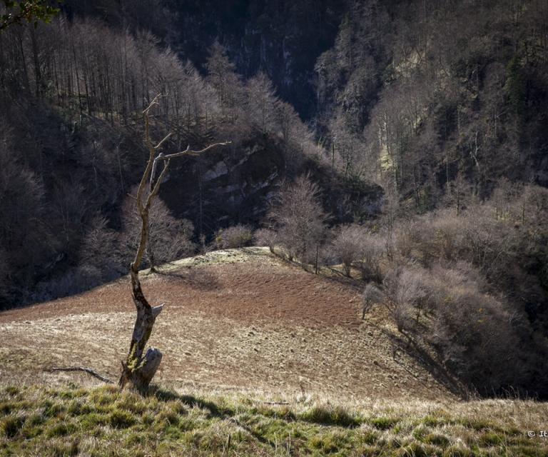 Pays basque 4_13