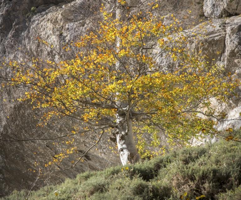 Pays basque 5_31